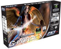 PNY  GeForce 8600 GTS