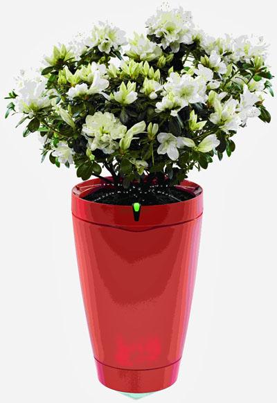 Una maceta inteligente que riega las plantas de forma for Fotos de plantas en macetas