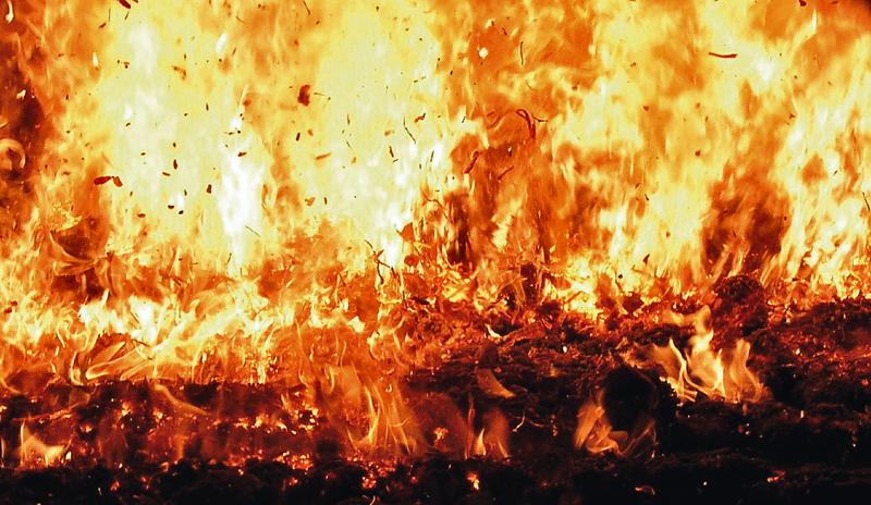 Vista de la cámara de combustión
