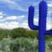 Concepto Cactus, una iniciativa para la concienciación en la ciberseguridad de la videovigilancia