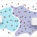 La nueva solución de puntos de acceso Wi-Fi de D-Link permite alimentarse con el cable PoE