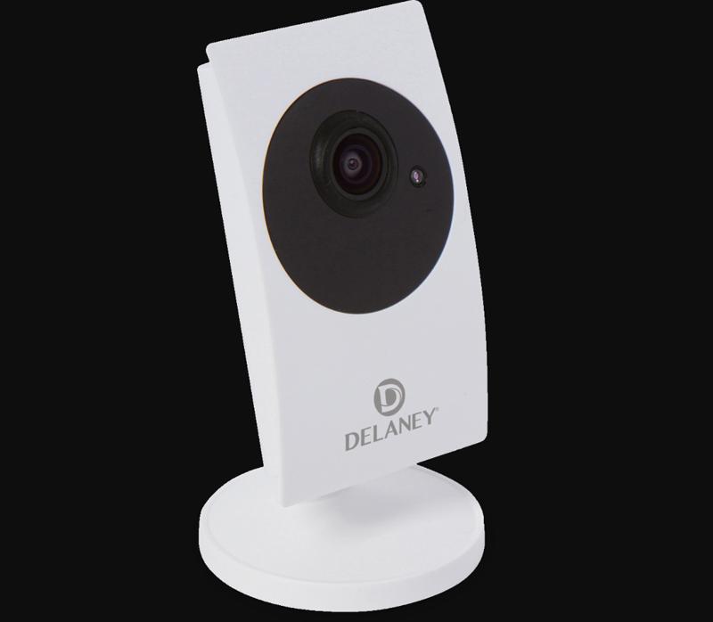 La cámara de seguridad de Delaney permite la monitorización, en tiempo real, de las estancias del hogar.