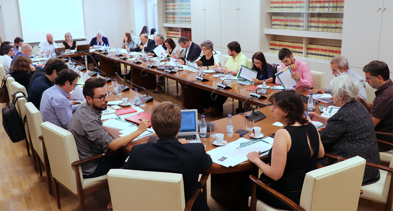 El Comité Técnico debatiendo.