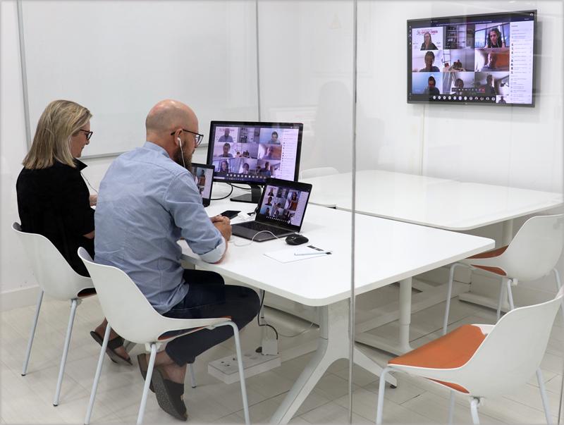 Reunión virtual del Comité Técnico