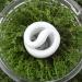 Signify impartirá un webinar sobre 'Economía circular aplicada a la iluminación'